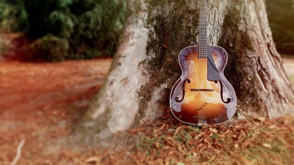 Octave mandoline Northfield Sans_t13