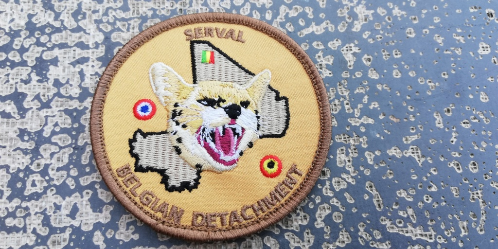 INSIGNES BELGES * MISSION EXTERIEURE OTAN ISAF ONU KFOR ISFOR SFOR ... Img_2316