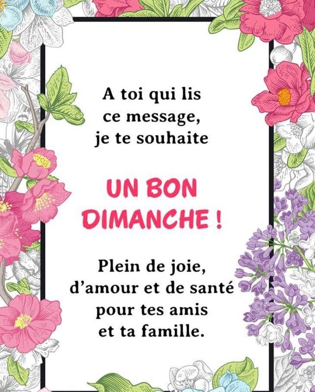 Bonjour, bonsoir..... - Page 34 50252710