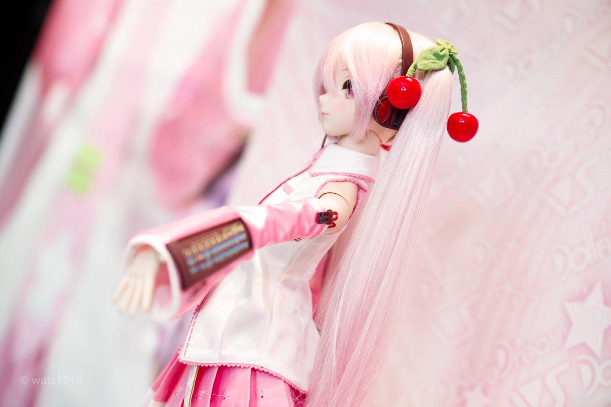 [Dollfie Dream] Vocaloid Sakura Miku  - Page 5 D5ojsi10