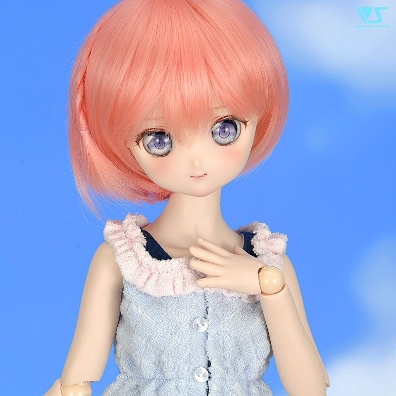 [Dollfie Dream] DCH-17 et DD Boys au Dream Choice System Dress113