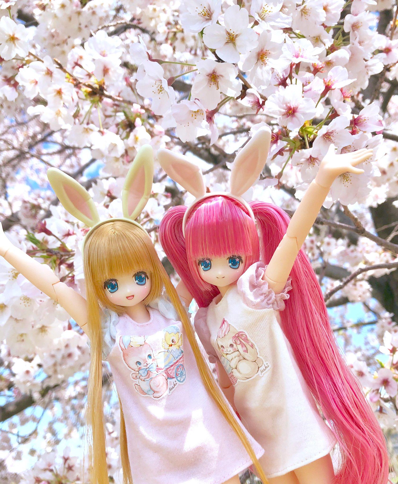 [Pure Neemo] Ex-Cute - Magical Cute Happy Shiny Koron Img_2035