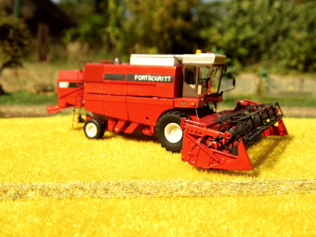 Fortschritt E 517 Export in Rot Dsci1022