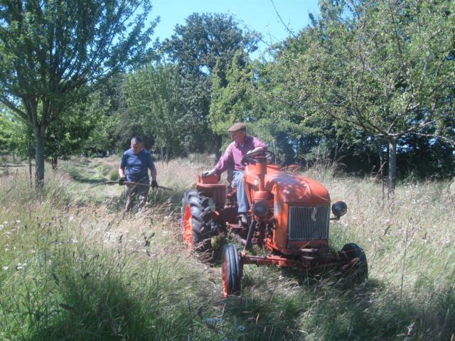 Tracteur motostandard, besoin de conseils Img_8126