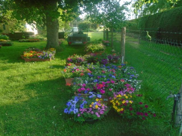 fleurs de fouqueville Passag19