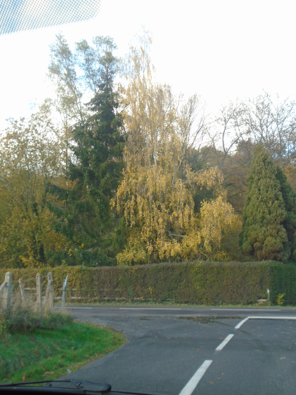 Tons d'automne Photos17
