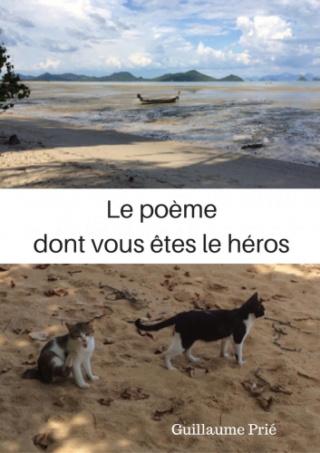 Le poème dont vous êtes le héros Book-210