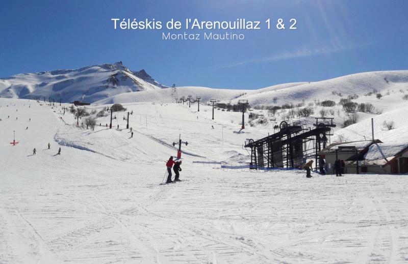 Téléskis à perches débrayables (TKD1) de l'Arenouillaz 1 et 2 20200317
