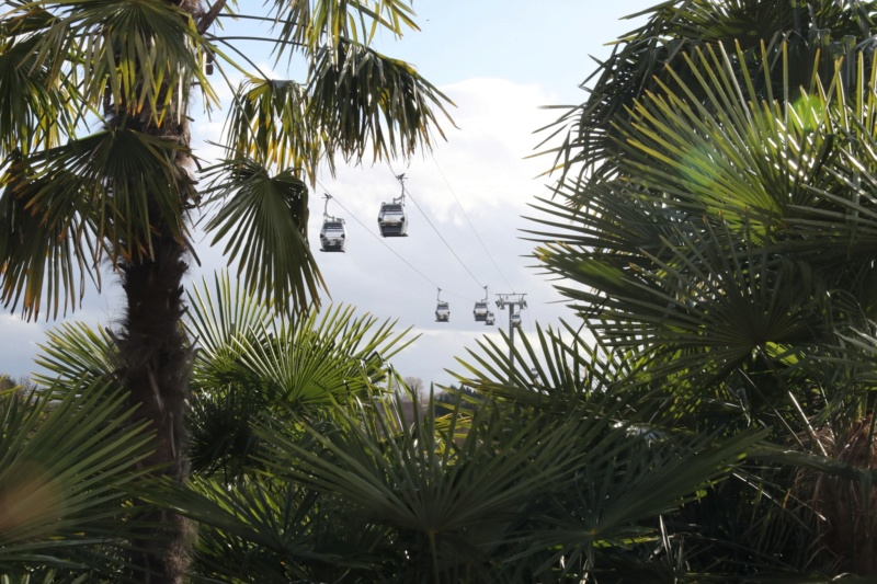 Télécabine débrayable (TCD8) Nuage de Beauval – Zoo de Beauval 2737c211