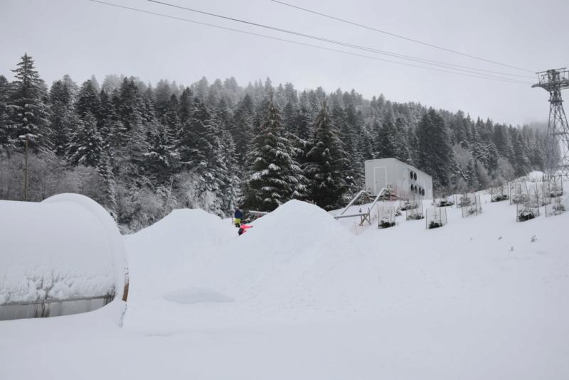 Nouveautés 2021, Super Besse et Le Lioran s'équipent en neige de culture Dsc_5672