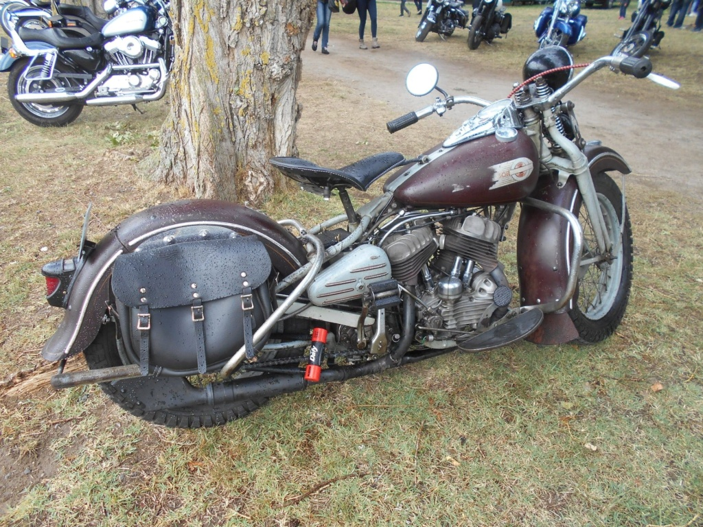 Les vieilles Harley Only (ante 84) du Forum Passion-Harley - Page 21 Lamou211