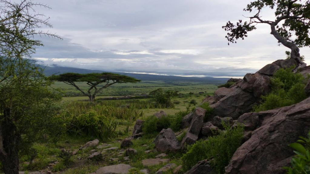 Tanzanie P1040516
