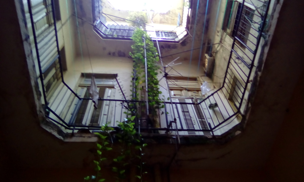 Musee Lezama Lima a la havane Img_2021