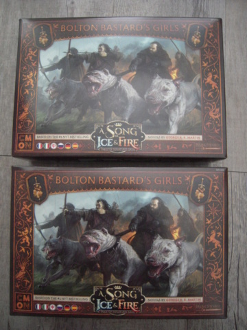 [VENTE/ECHANGE] A Song Of Ice & Fire, Bolt Action, AOS, Kill Team, 40k, Blood Bowl, Necromunda, Batman, Dark Souls, Wrath of King, Malifaux, Heroclix, Dead Man's Hand, Dracula's America...  Dscn0517