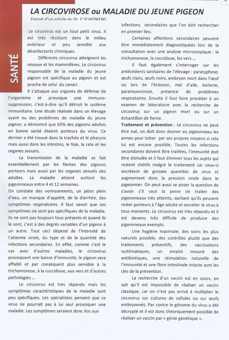 LA CIRCOVIROSE  OU MALADIE DU JEUNE PIGEON   610