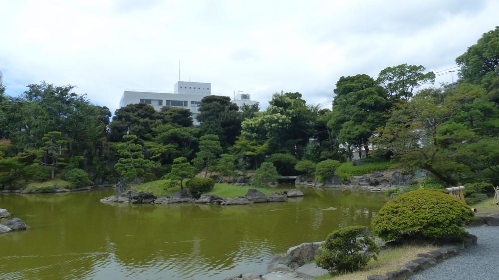 Niwaki, la taille en nuage, l'art topiaire, dans le jardin de Michel P1170217