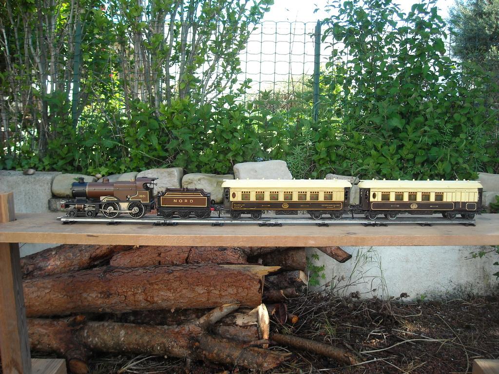 Restauration/rénovation de locomotives Hornby Dscn1918