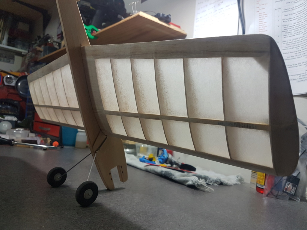 Baby Ringmaster build - Page 2 20180813