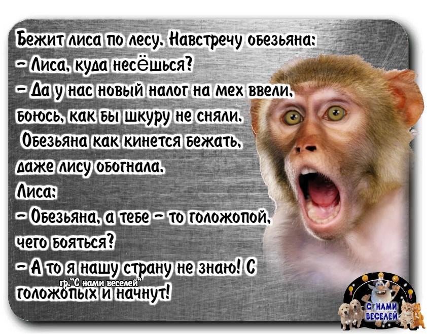Анекдоты - Страница 12 0e909b10