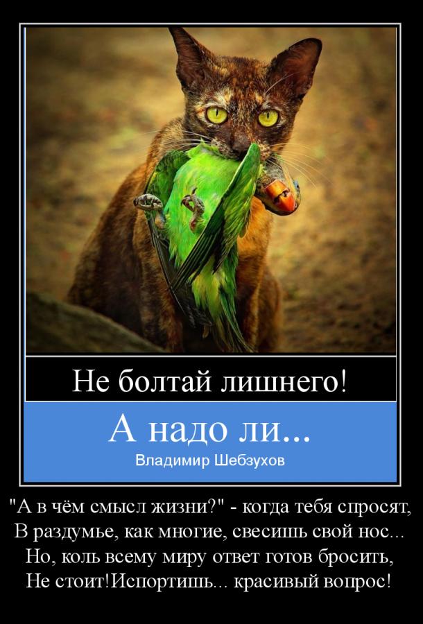 Владимир Шебзухов Притчи  - Страница 43 _s_-_e10