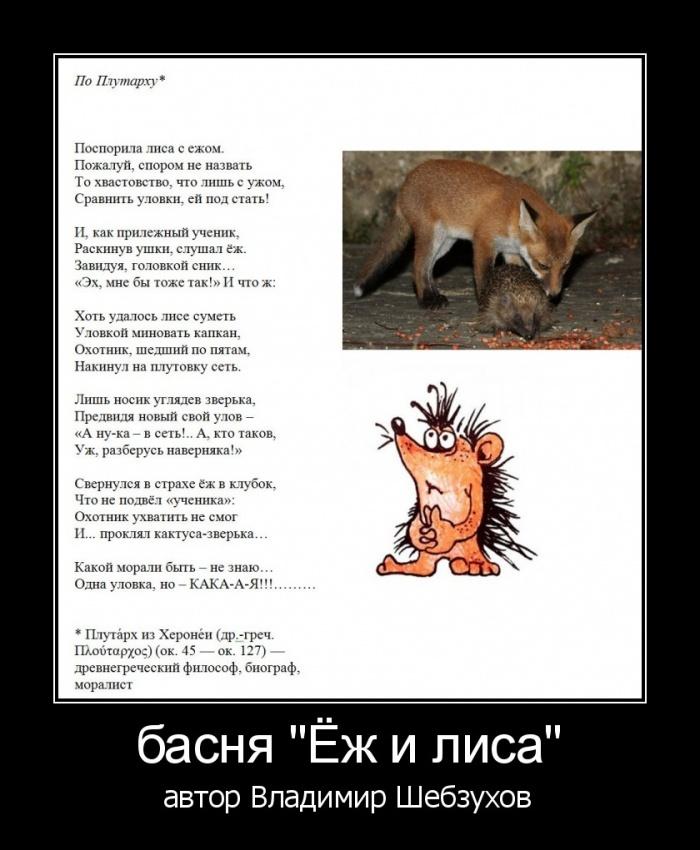 Владимир Шебзухов  «Стихи про ёжиков» A__e-e10