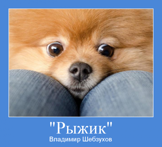 Владимир Шебзухов Стихи, сказки, детское - Страница 6 Cccccc29