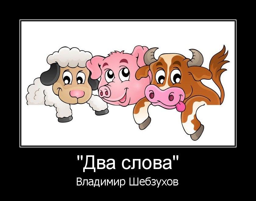Владимир Шебзухов Стихи, сказки, детское - Страница 4 Cccccc49