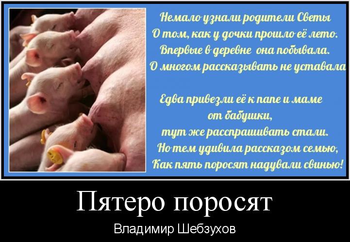 Владимир Шебзухов Стихи, сказки, детское - Страница 6 Eece10
