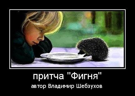 Владимир Шебзухов  «Стихи про ёжиков» Iu10