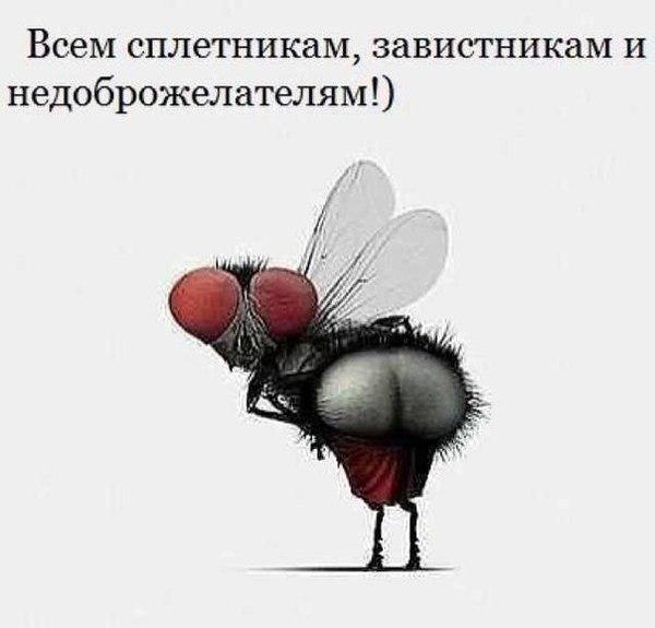 Владимир Шебзухов «Тайны подсознания: Чёрная и белая ЗАВИСТЬ» Nez_ne10