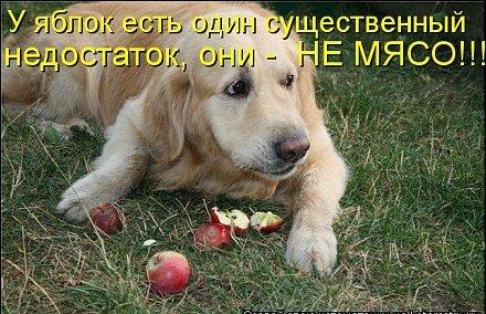 Владимир Шебзухов Притчи  - Страница 42 Sn_ee-10