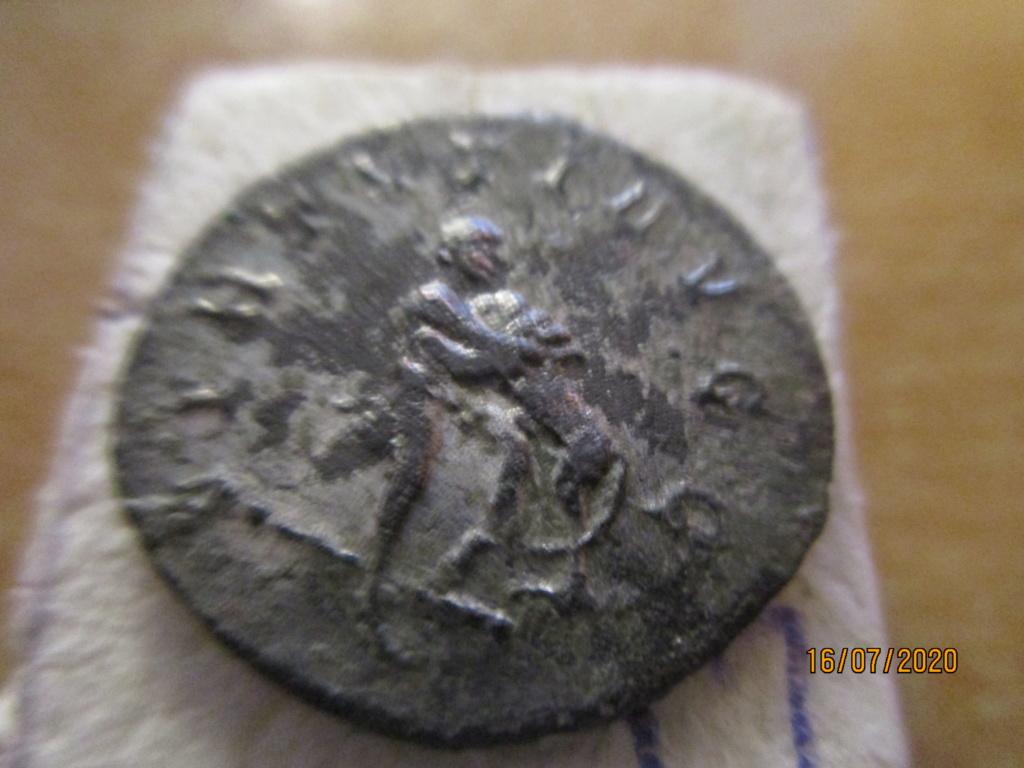 Maximien Hercule Img_0624