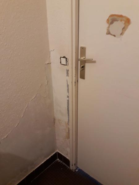 On louerais une maison ds cet état... 20210316
