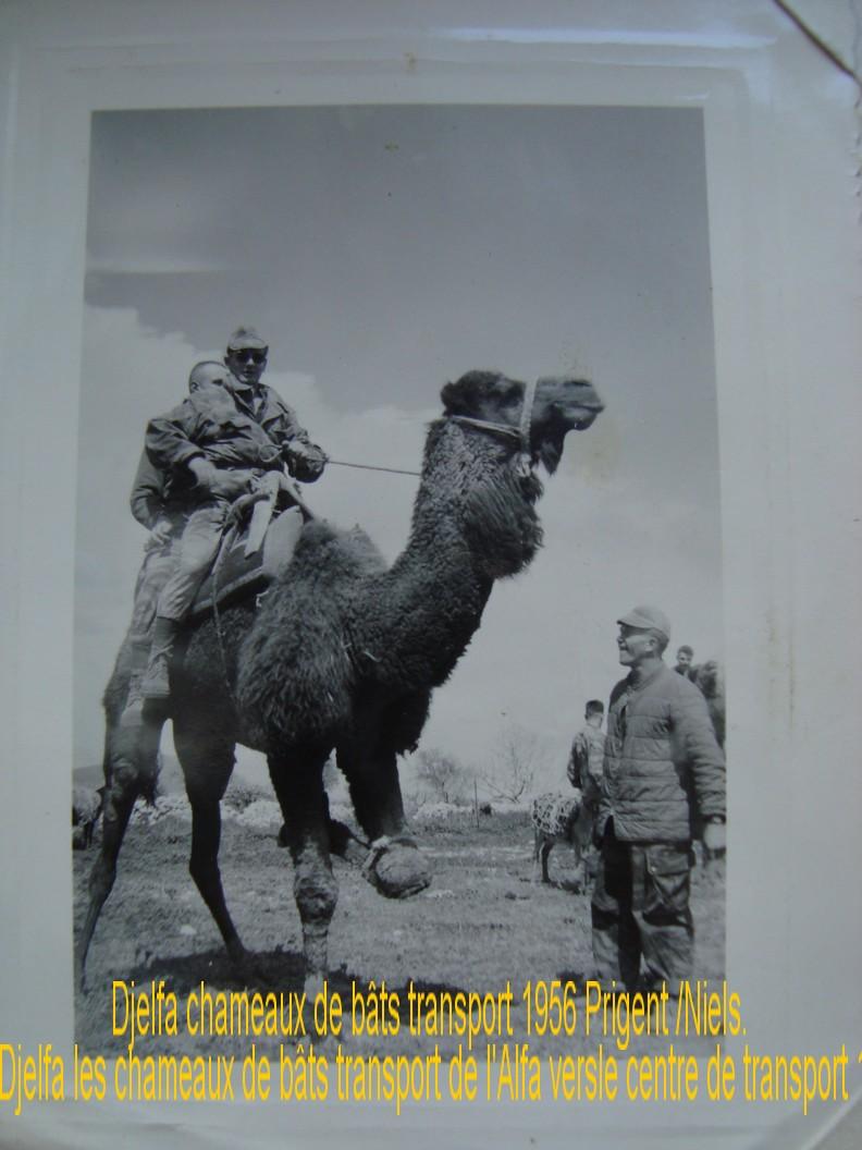 Mes photos d'AFN et d'ailleurs et d'autres de 1954 à 1959 - Page 2 Image119