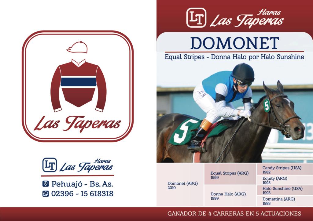 DOMONET (Equal Stripes) NUEVO PADRILLO DEL HARAS LAS TAPERAS - Temporada 2018 Domone11