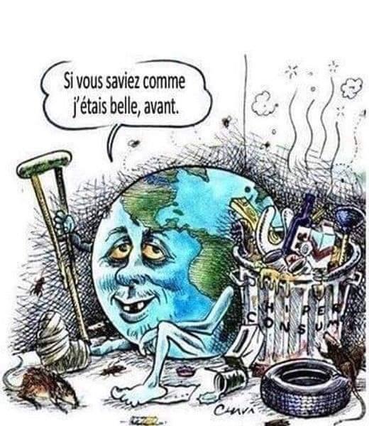Satirique Écologique - Page 2 Fb_im251