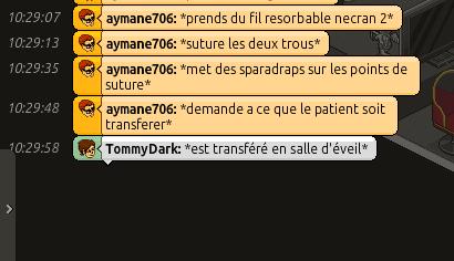 [C.H.U] Rapports d'actions RP de Aymane706 - Page 5 Captu300