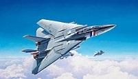 "GB  ""50ème Anniversaire du Grumman F-14 """