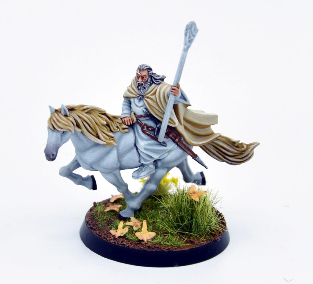 Redécouverte avec Rohan et alliés  Gandal11