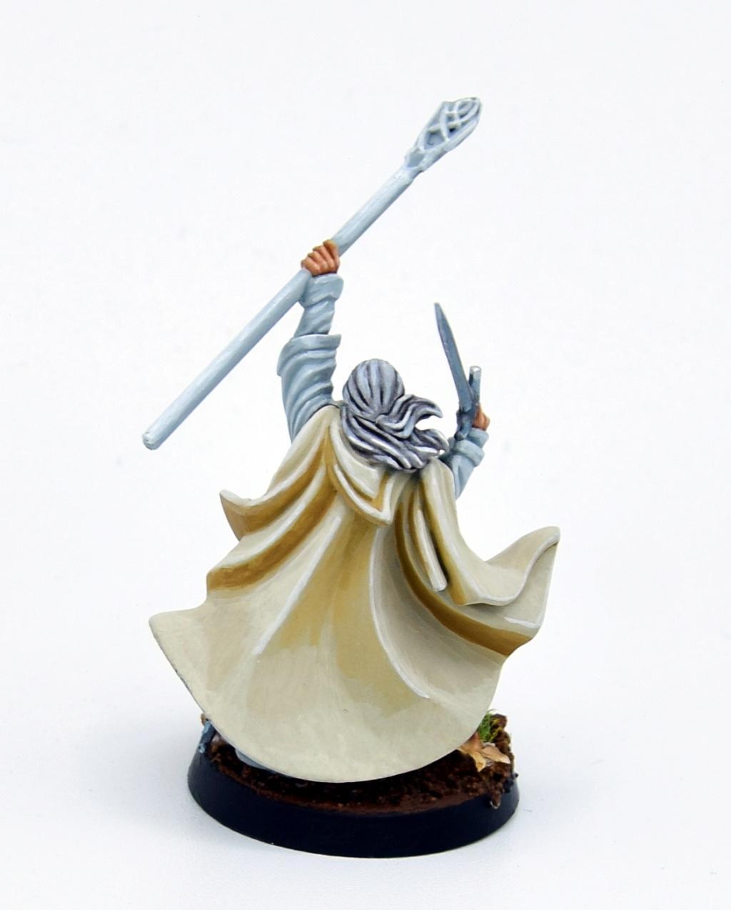 Redécouverte avec Rohan et alliés  Gandal13