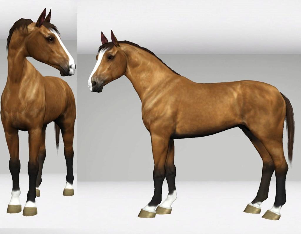 Регистрация лошадей в RHF 2 - Страница 8 Screen11