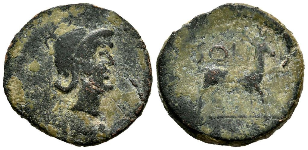 Posible moneda acuñada en Solia Salici10