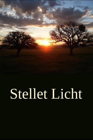 Stellet licht (2007) DVDRip XviD HUNSUB MKV Sl110