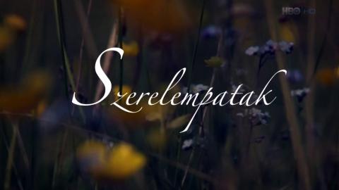 Szerelempatak (2013) 720p HDTVRip x264 HUN Szp110