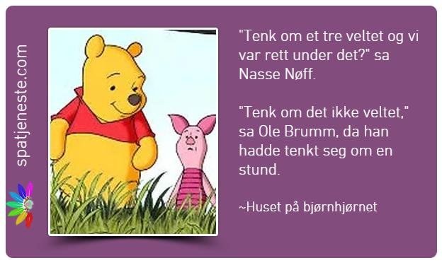 Ole Brumm sitat Spatje10