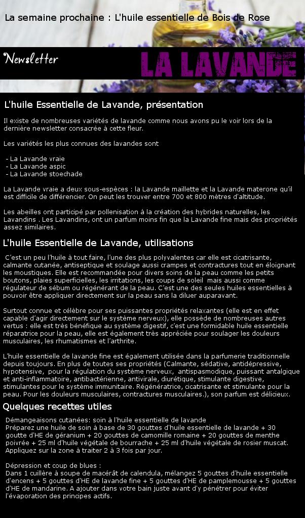 Newsletter 21 - Les huiles Essentielles : La Lavande Hf1lhz10