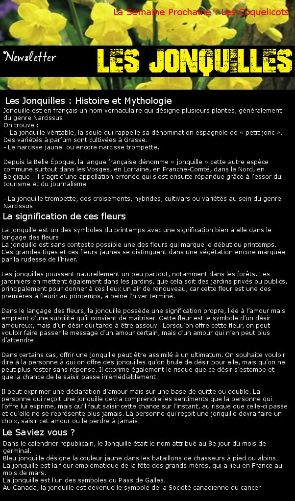 Newsletter 12 - Les Fleurs : Les Jonquilles Jonqui10