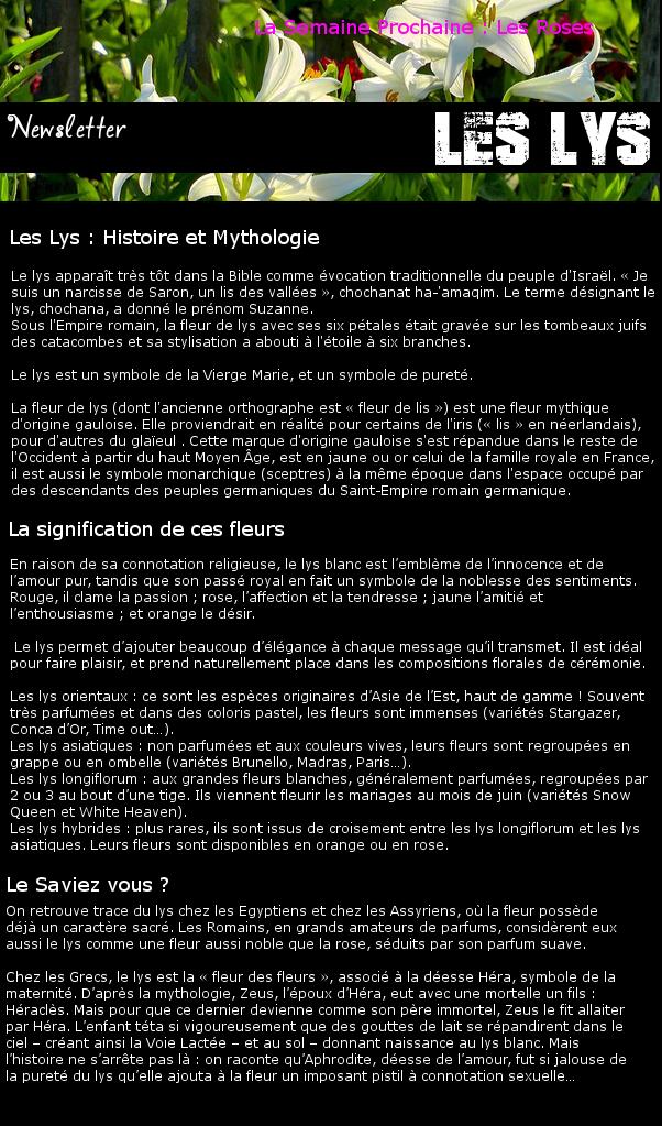 Newsletter 14 - Les Fleurs : Les Lys Lys10