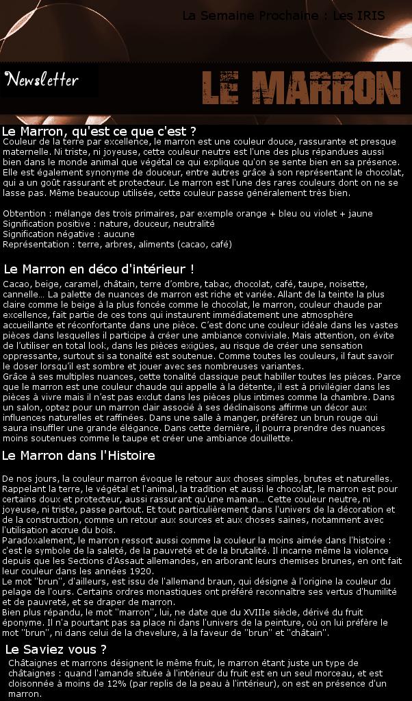 Newsletter 10 - Les couleurs : Le Marron Marron10