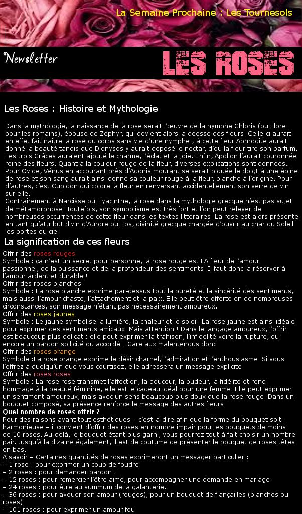 Newsletter 15 - Les fleurs : Les Roses Roses10